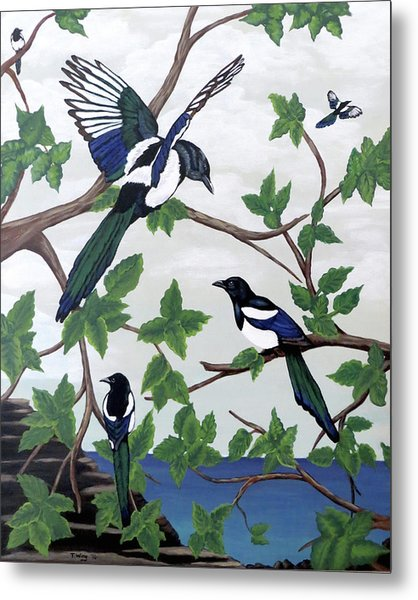 Black Billed Magpies Metal Print