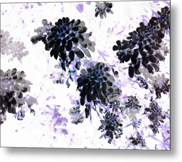 Black Blooms I Metal Print