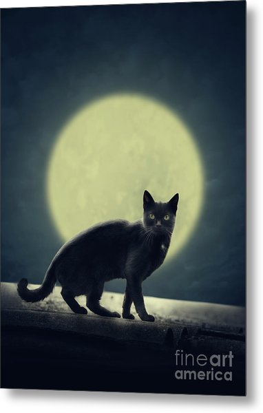 Black Cat And Full Moon Metal Print