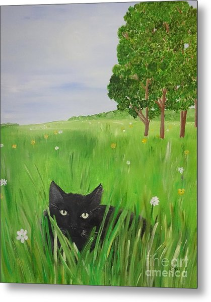 Black Cat In A Meadow Metal Print