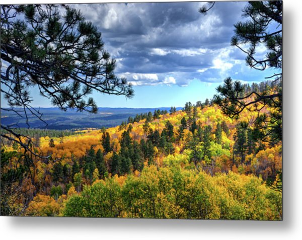 Black Hills Autumn Metal Print