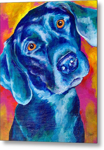 Black Lab Pop Art Metal Print
