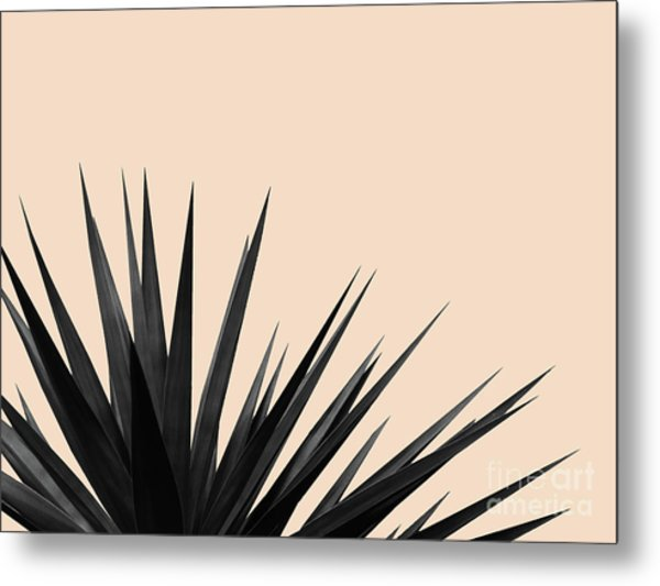 Black Palms On Pale Pink Metal Print
