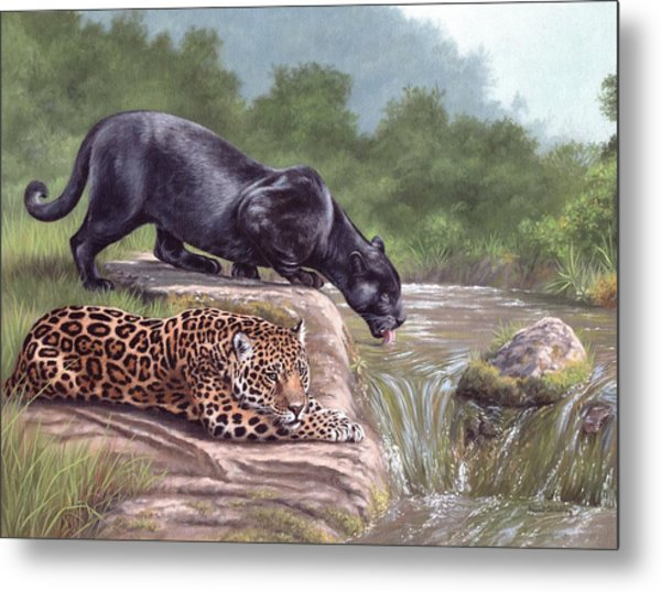 Black Panther And Jaguar Metal Print