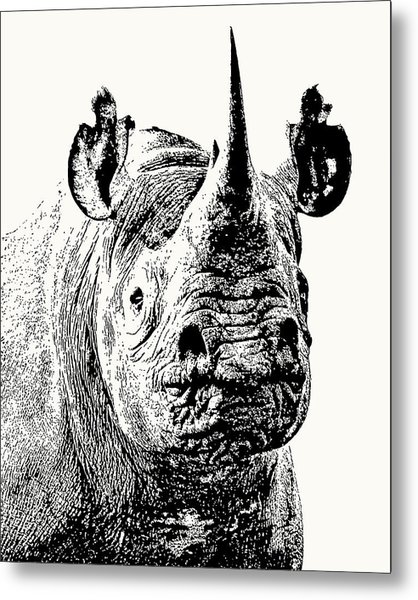 Black Rhino Portrait Metal Print