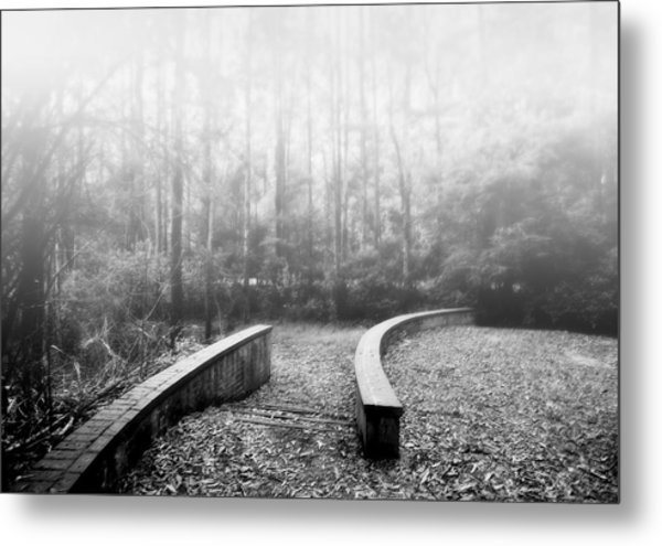 Black Spur Metal Print