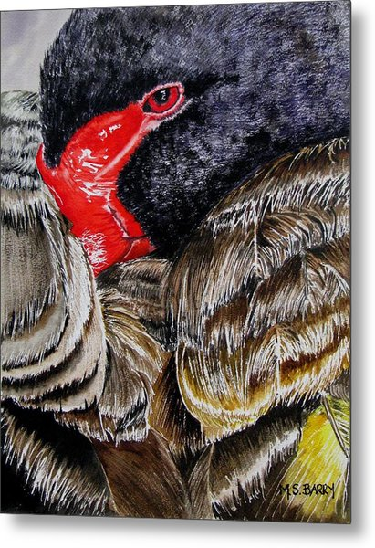 Black Swan Metal Print by Maria Barry