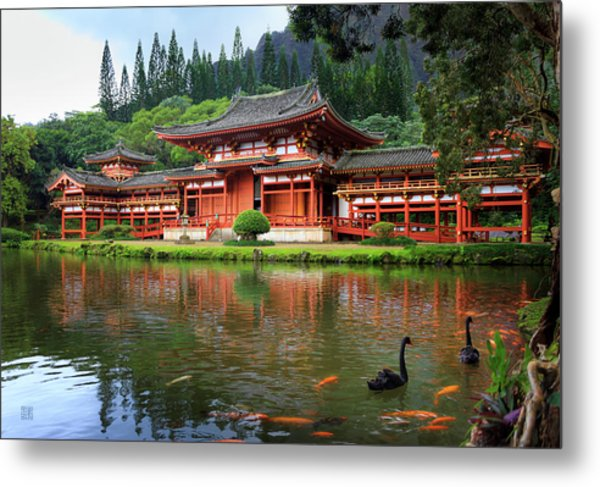 Black Swans At Byodo-in Metal Print