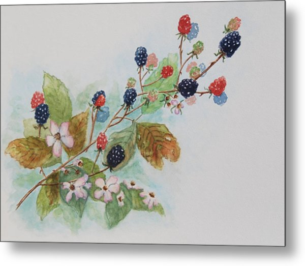 Blackberry Composition Metal Print by Geraldine Leahy