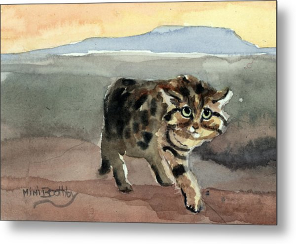 Blackfooted Cat Metal Print