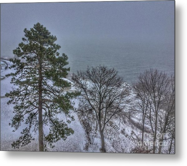 Blizzard Stella On Casco Bay Metal Print
