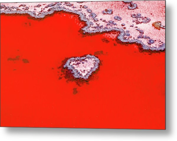 Blood Red Heart Reef Metal Print