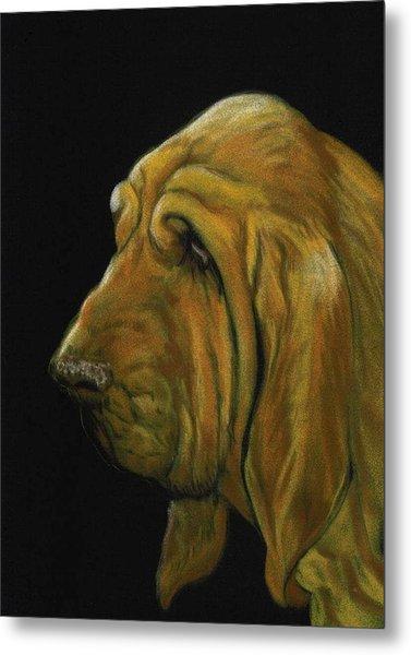 Bloodhound Metal Print