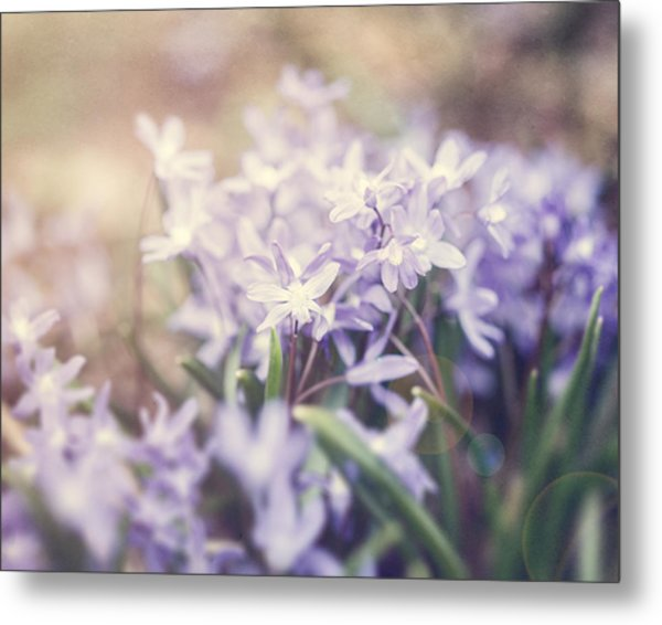 Bloom Metal Print by Lisa Russo