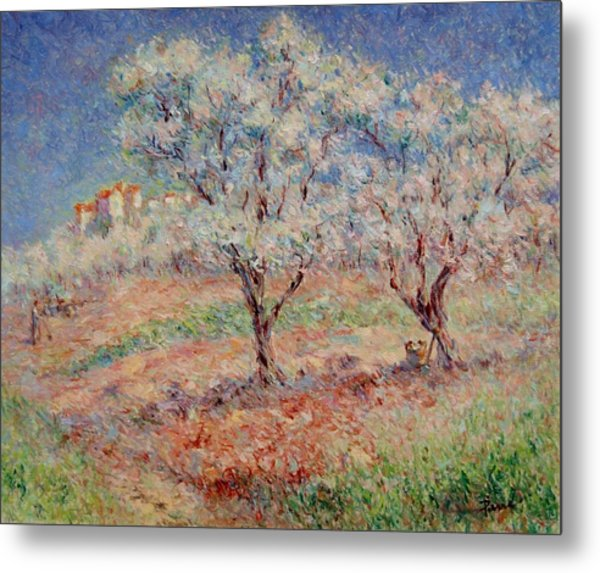 Blossom Trees  Metal Print