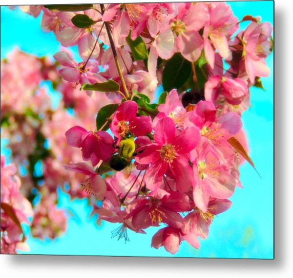 Blossoms And Bees Metal Print