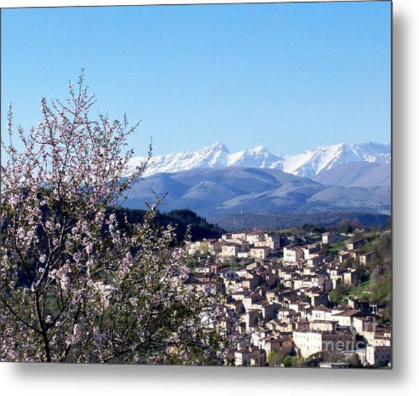 Blossoms With A View Metal Print