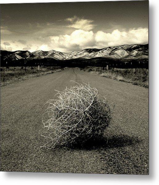 Blowin In The Wind.. Metal Print