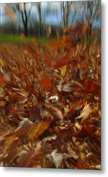 Blowing In The Wind Metal Print by Juergen Roth