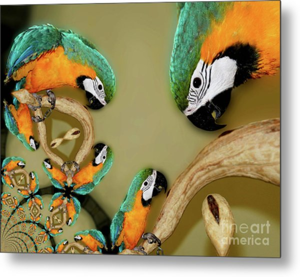 Blue And Gold Macaw Parrot Abstract Metal Print