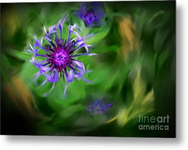 Blue Bachelor Button Metal Print