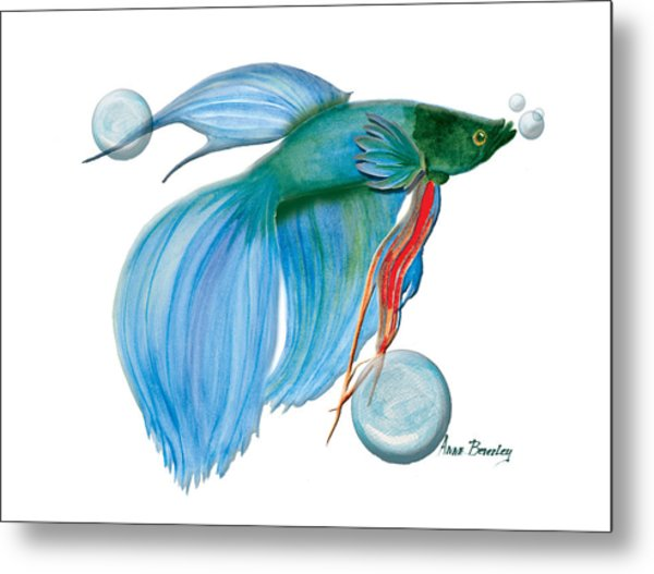 Blue Beta Fish Metal Print