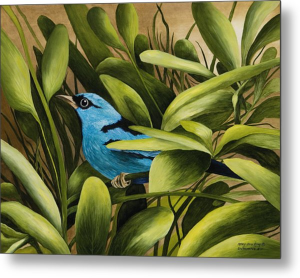 Blue Bird In Branson Metal Print