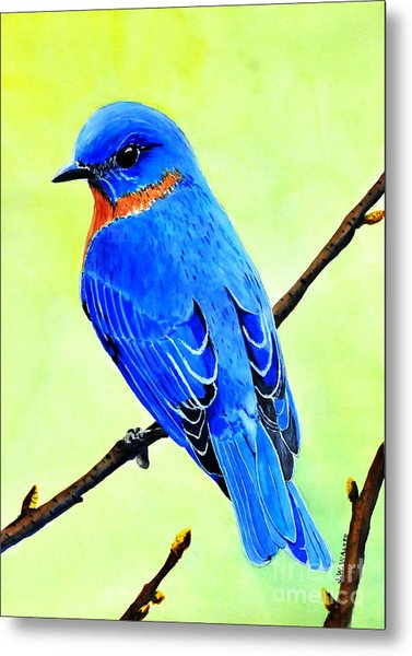 Blue Bird King Metal Print