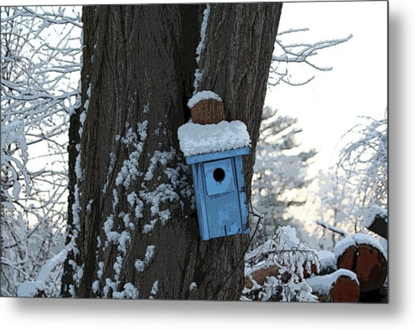 Blue Birdhouse Metal Print