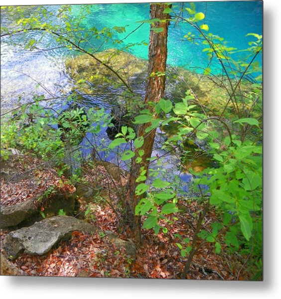 Blue Chill Metal Print
