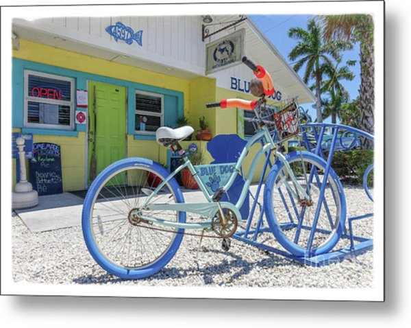 Metal Print featuring the photograph Blue Dog Matlacha Island Florida by Edward Fielding