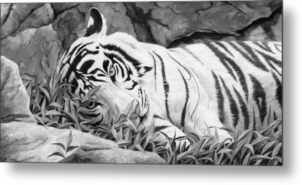 Blue Eyes - Black And White Metal Print