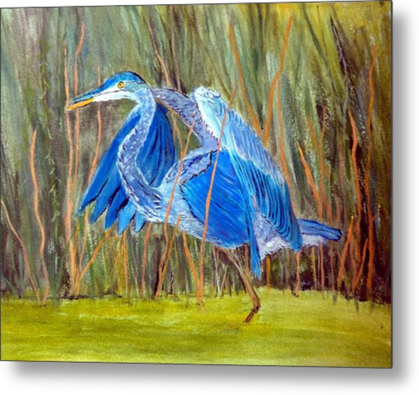 Blue Heron In Viera  Florida Metal Print