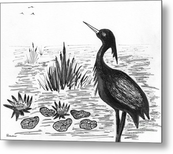 Crowned Night Heron Lily Pond Paradise In Ink D1 Metal Print