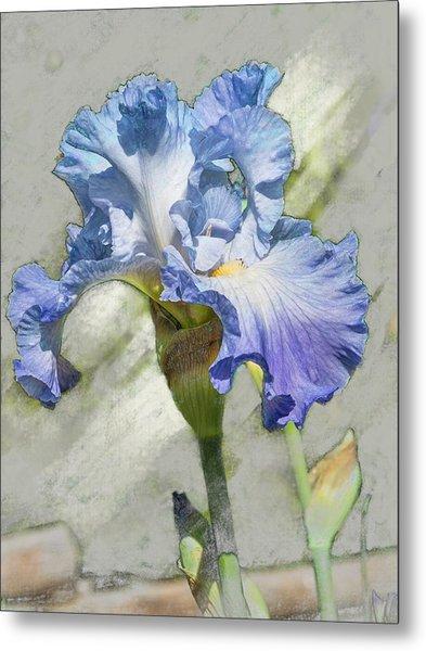 Blue Iris 2 Metal Print