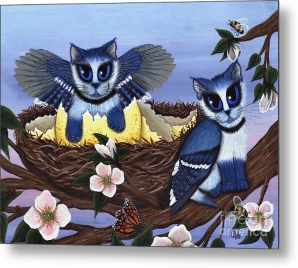 Blue Jay Kittens Metal Print