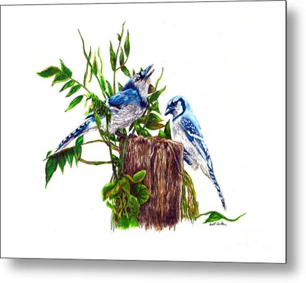 Blue Jays Metal Print