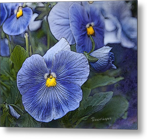 Blue Ladies Metal Print