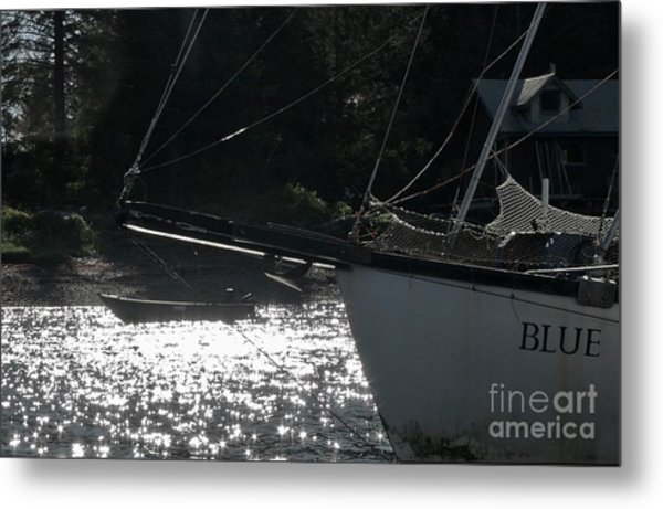 Metal Print featuring the photograph Blue by Laura  Wong-Rose