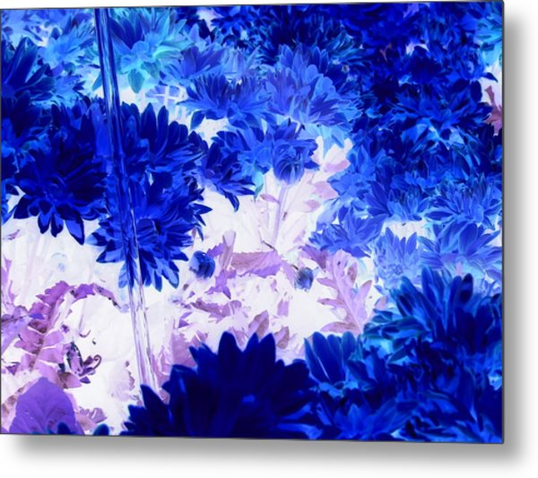 Blue Mums And Water Metal Print
