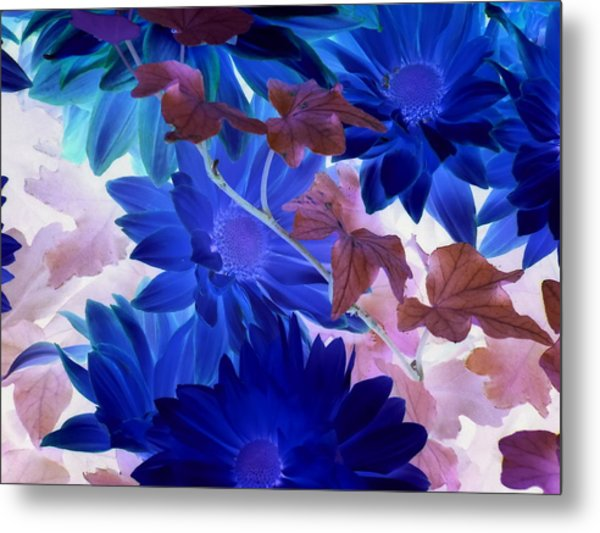 Blue Mums With Purple Ivy Metal Print