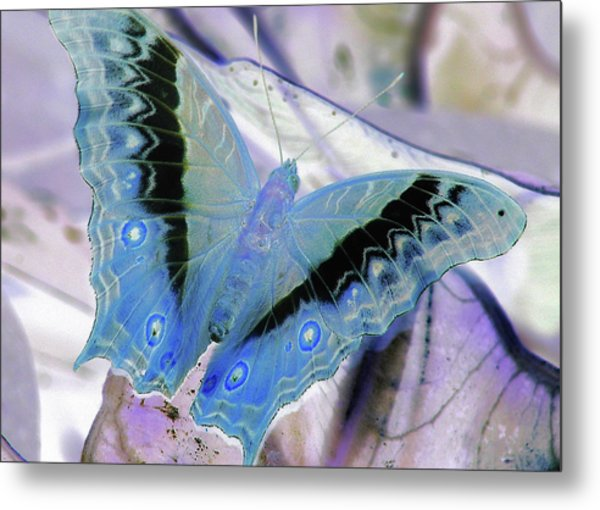 Blue Negative Metal Print by JAMART Photography