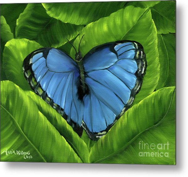 Blue Night Butterfly Metal Print by Maria Williams
