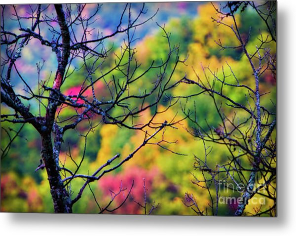 Blue Ridge Autumn Metal Print