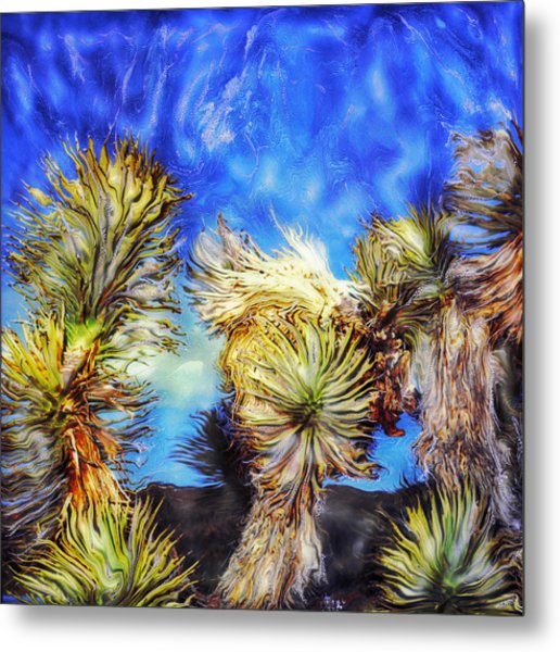 Blue Sky Yucca Metal Print by Paul Tokarski