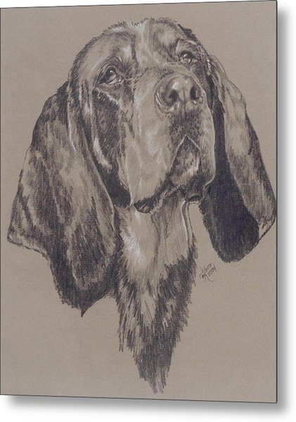 Bluetick Coonhound Metal Print