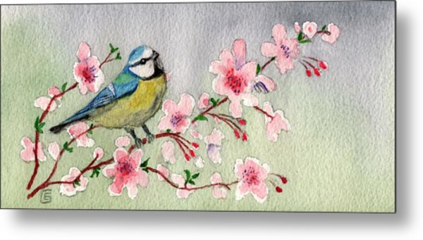 Blue Tit Bird On Cherry Blossom Tree Metal Print
