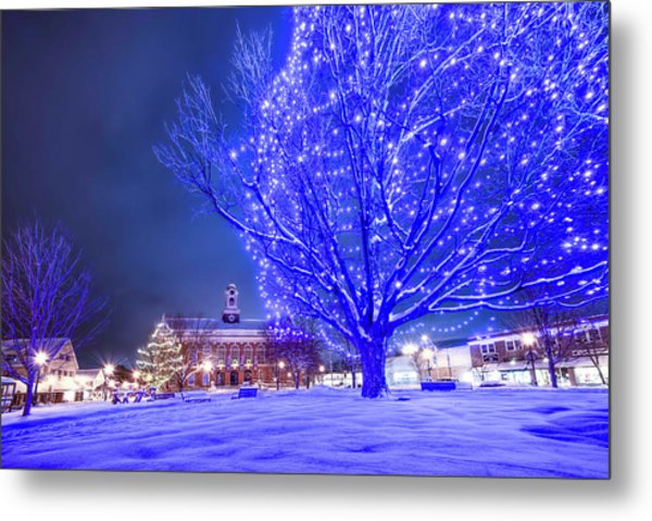 Blue Tree - The Final Year Metal Print