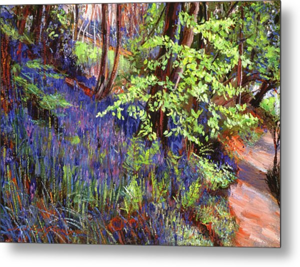 Blue Wildflowers Pathway Metal Print