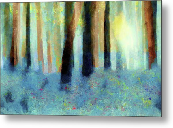Bluebell Wood By V.kelly Metal Print